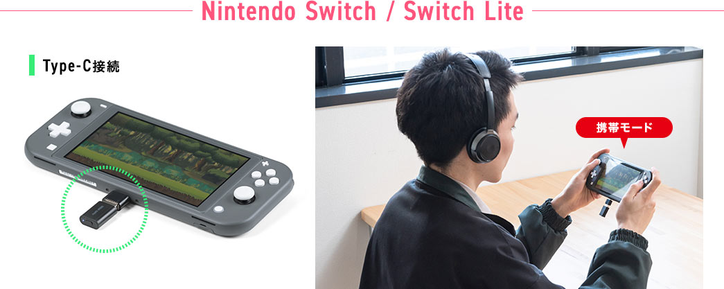 Nintendo Switch / Switch Lite