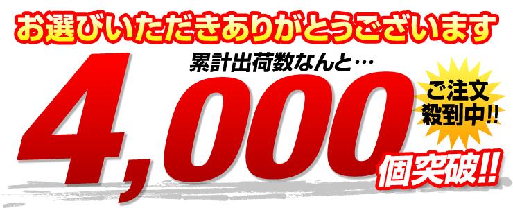 "�v�o�ב䐔4000�""˔j�I"