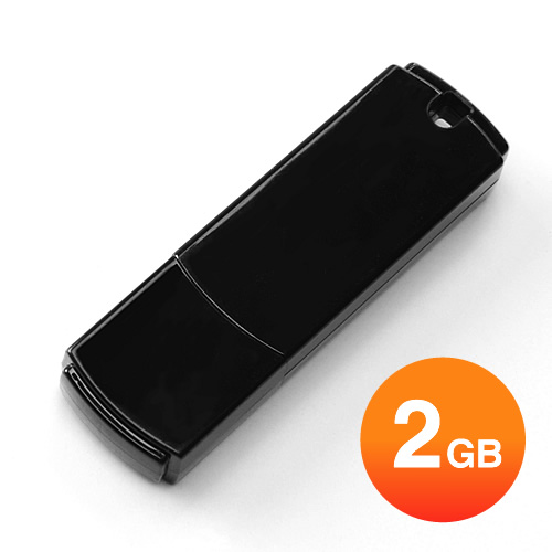 USBメモリ 2GB(シンプルブラック)