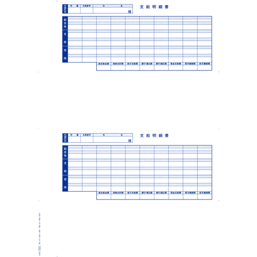 OBC(オービック) 6202 単票封筒用支給明細書【返品不可】