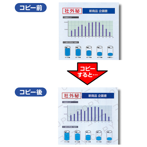 マルチタイプコピー偽造防止用紙(A4・500シート)